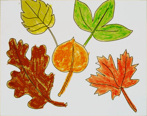 Leaf coloouring activities for Kids